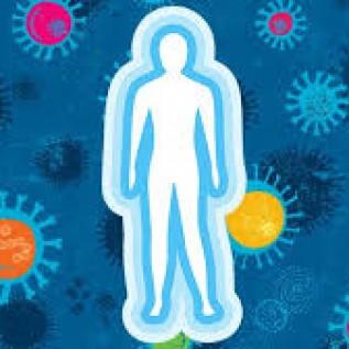 Meningkatkan imun tubuh - herbatani